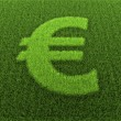 Grass Euro Sign - Stock Photo