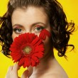 The girl with Gerber's flower — Foto Stock