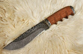 The hunting knife on a skin of a ram — Stock Photo