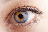 Eye closeup — Stock Photo