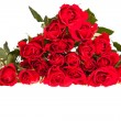 Red roses on white isolated background — Stockfoto