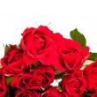 Red roses on white isolated background — Stok fotoğraf