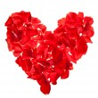 Red roses petals Valentine's Day — Stock Photo