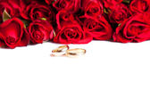 Valentine's day roses wedding rings — Stock Photo