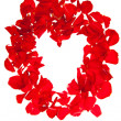 Red rose petals isolated on white - Valentine's Day - Stock Photo