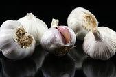 Garlic bulbs — ストック写真
