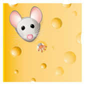 A mouse eating a piece of cheese — Stock Vector