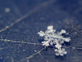 Snowflake on scratсhed surface — Stock Photo