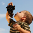 Baby boy with an grape — Stock Photo #5127227
