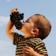 Baby boy with an grape — Stock Photo #5127228