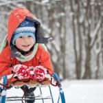 Little boy sliding — Stock Photo #5127621