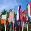 Different flags of various countries — Stock Photo #3923877