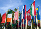 Different flags of various countries — Stock Photo