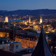 Stock Photo: Nightview over Zurich