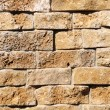 Wall from a brick — Stock Photo #5313467