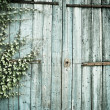 Old faded barn doors background — Stock Photo #3988007