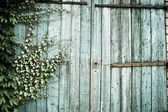 Old faded barn doors background — Stock Photo