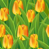 Bezszwowe z tulipany — Wektor stockowy