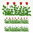 Border of roses - Stock Vector