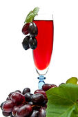 Wine and grapes — Stockfoto