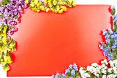 Czerwona kartka z kwiatami — Zdjęcie stockowe