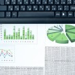 Business charts — Stock Photo