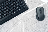Keyboard and mouse on spreadsheets — Stock Photo
