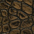 Stock Photo: Gold and black crocodile leathet texture