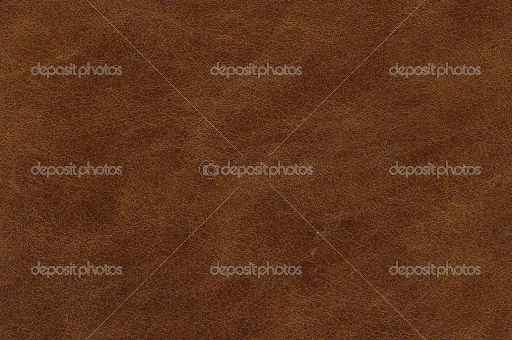 Brown leather texture — Stock Photo #5219187