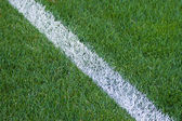 Green line on soccer field. — Stock Photo