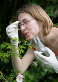 New plant analyzing. — Stock Photo