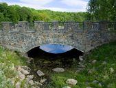 Puente de piedra hermoso día de verano. — Foto de Stock