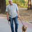 Smiling old senior with his dog. — Stock Photo #4098377