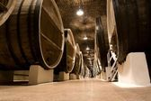 Big wine barrels. — Stock Photo