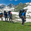 Group of hikers in mountain wally. — Stock Photo