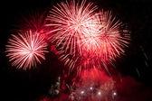 Firework in night. — Stock Photo