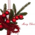 Christmas Card On White Background — Stock Photo