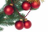Branche de sapin avec des boules de noël rouges — Photo