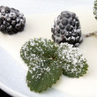 Blackberries With Cream And Icing Sugar, Closeup — Stock Photo