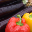 Peppers And Eggplants — Stock Photo