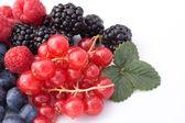 Soft Fruits — Stock Photo