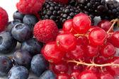 Red Soft Fruits - Closeup — Stock Photo