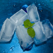 Ice And Mint — Stock Photo