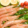 Plate With Prawns — Stockfoto