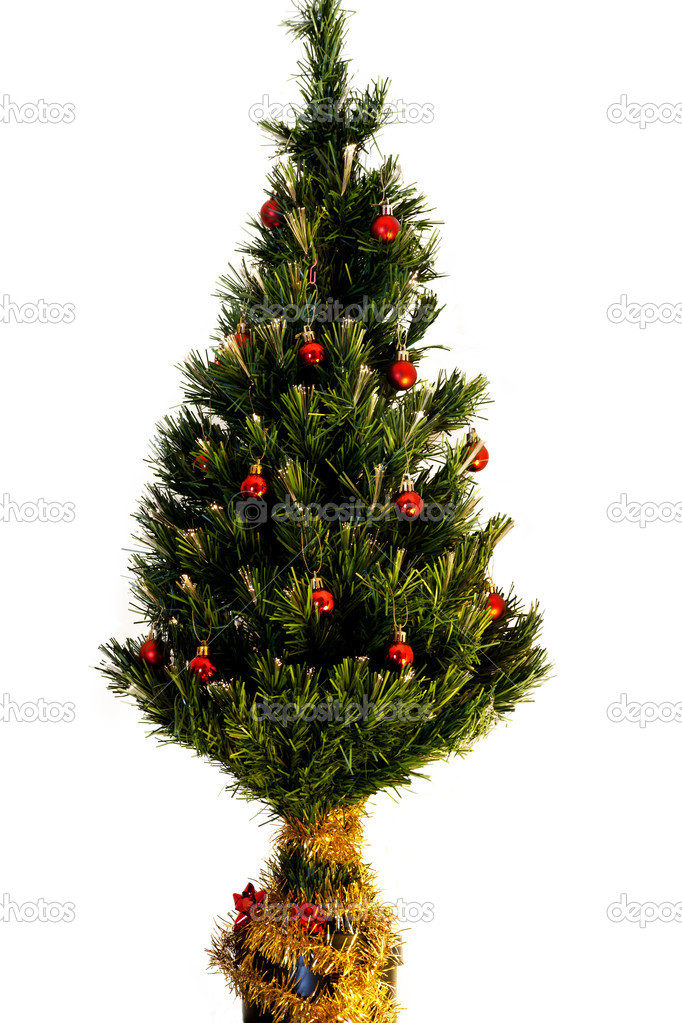 Christmas tree isolated on white background. — Stock Photo #4504516