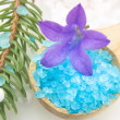 Bath Salts And Fir Tree Branch — Stock Photo