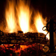 Fire In The Fireplace — Stock Photo #4658887
