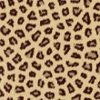 Leopard Skin Texture - Stock Photo