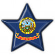 Idaho (USA State) button flag star shape - Foto Stock