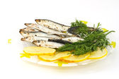 Salted sprats with lemon and dill — Stock Photo